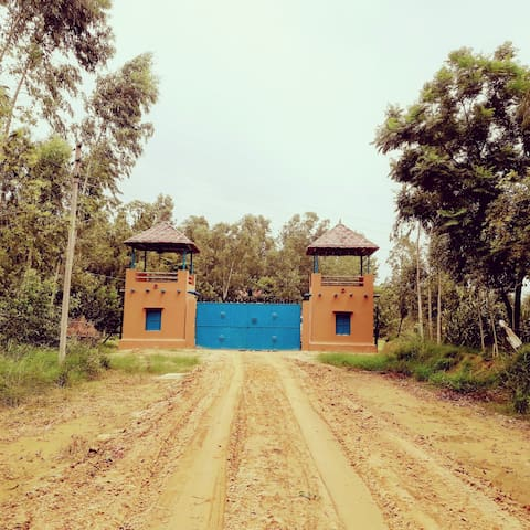 Basi woods, offline luxury