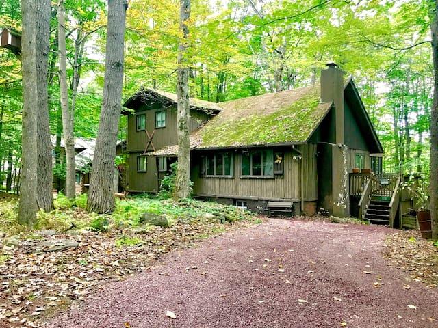 Magical Log Cabin in Arrowhead Lakes