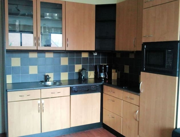 2room apartment, Rotterdam, forest