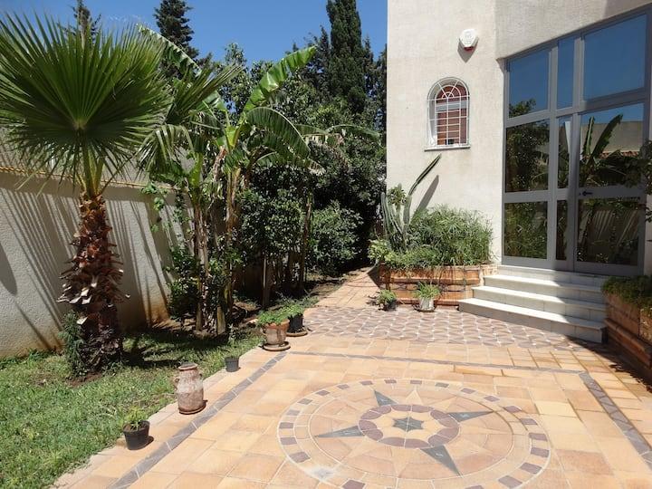 Studio Dorny in a garden located