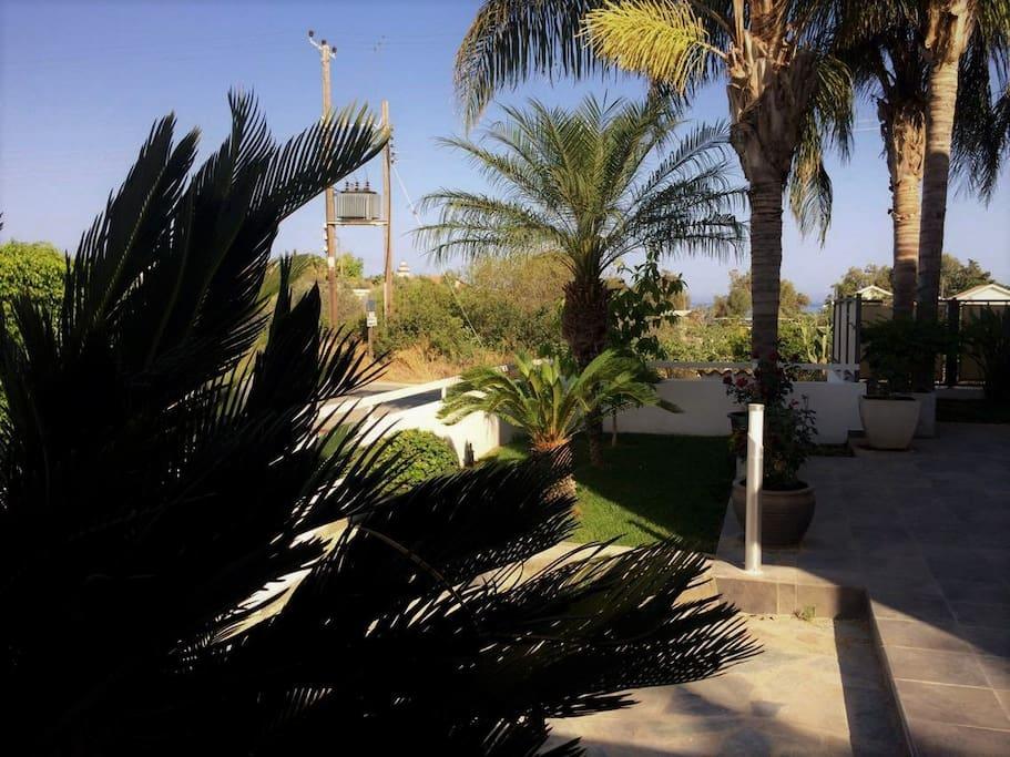The garden at the entrance!