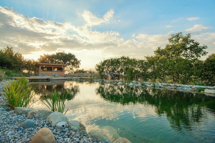 Maison d'exception piscine naturelle Dô provençale - Charols - Haus