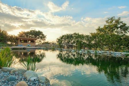 Maison d'exception piscine naturelle Dô provençale - Charols