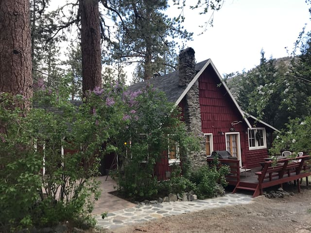 Wrightwood Haven