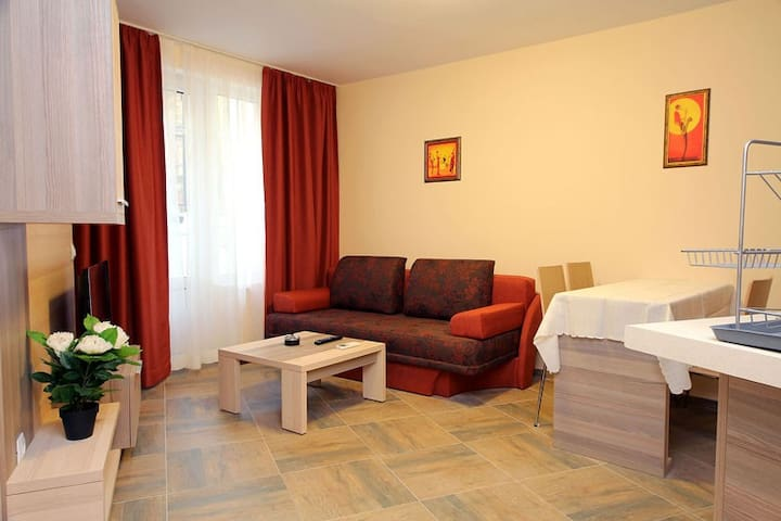 PRETTY APARTMENT IN THE OLD TOWN - 1 - Veliko Tarnovo - Serviced apartment
