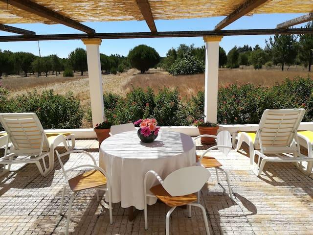 Alentejo SouthWest Countryside Villa Mimosa