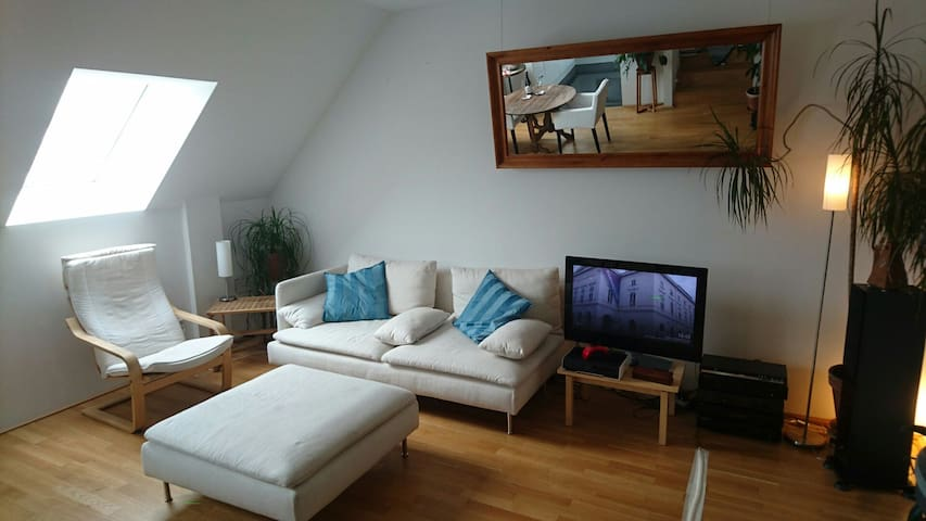 Big, nice room in shared penthouse, very central. - Vienne - Appartement