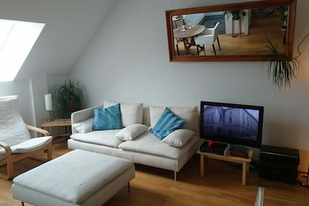 Big, nice room in shared penthouse, very central. - Wien - Wohnung