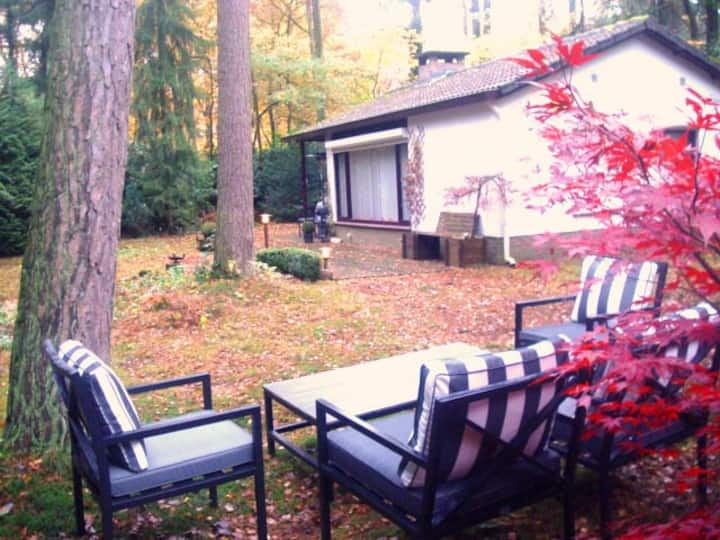 Pretty cottage in the woods/ Baarn