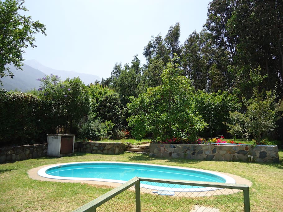 Vista desde la piscina y bosque - View from the pool and the forest