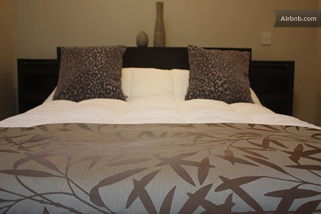 Apartments 1 -4 Bedroom
