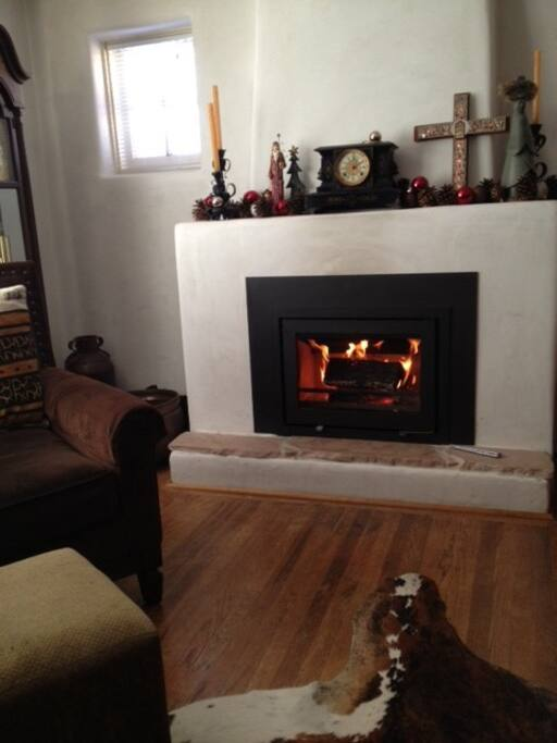 Gas insert - no messy wood stove to deal with - better for allergy sufferers