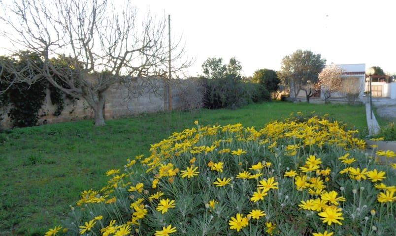 Villa Palmira marina di Lecce - Torre Chianca - Villa