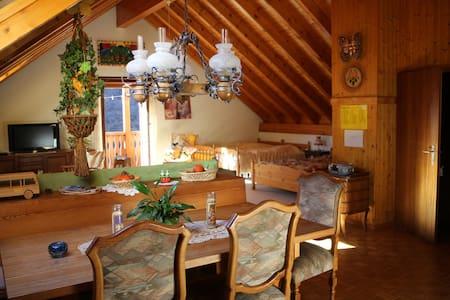 Appartamento manzardato in mezzo alla natura - Brione (Verzasca) - Természeti szállás