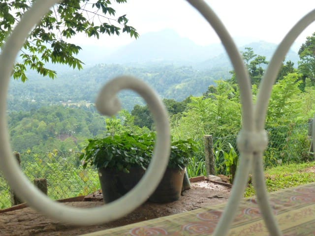 Enjoy the  view of the hills and valley from a garden seat