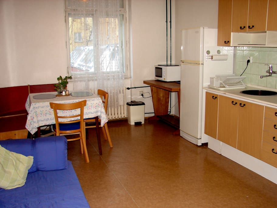 Kitchen with full amenities including fridge, microwave, coffee maker, kettle, gas stove -- additional large futon bed can sleep 2 adults (3 children) quite comfortably. The table can also be expanded to accommodate 6-8 people. Booster seat also available