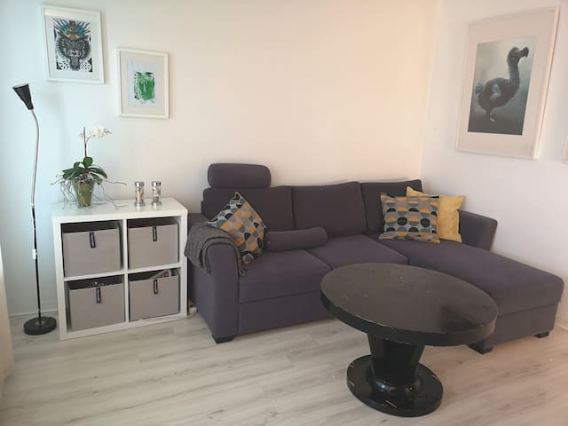 Small studio close to centrum and airport bus.