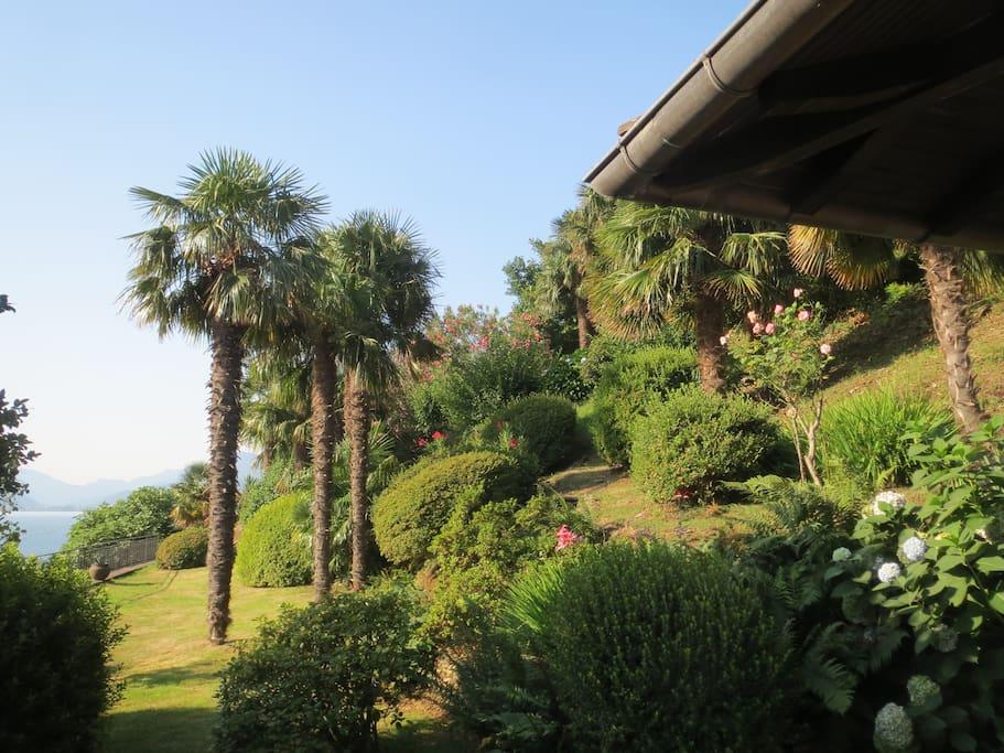 Garten Blick nach Stresa