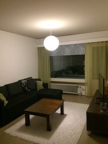 Two-room apartment(50m2), next to city center - Jyväskylä - Appartement
