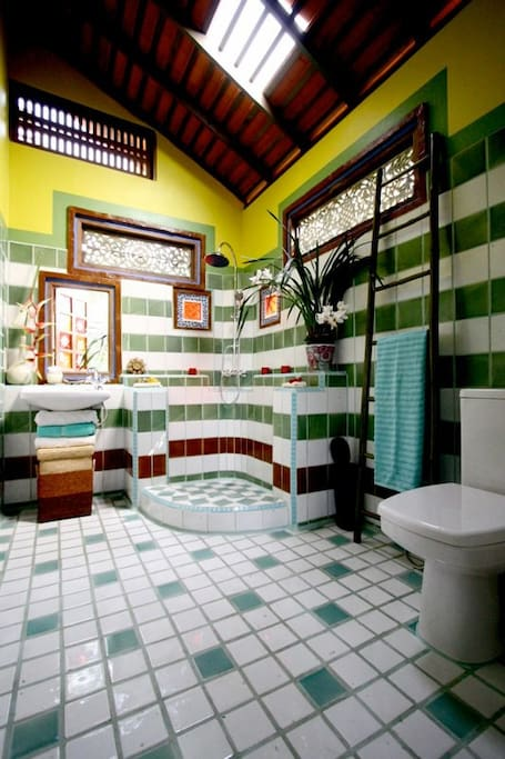 Moroccan style bathroom in Fez