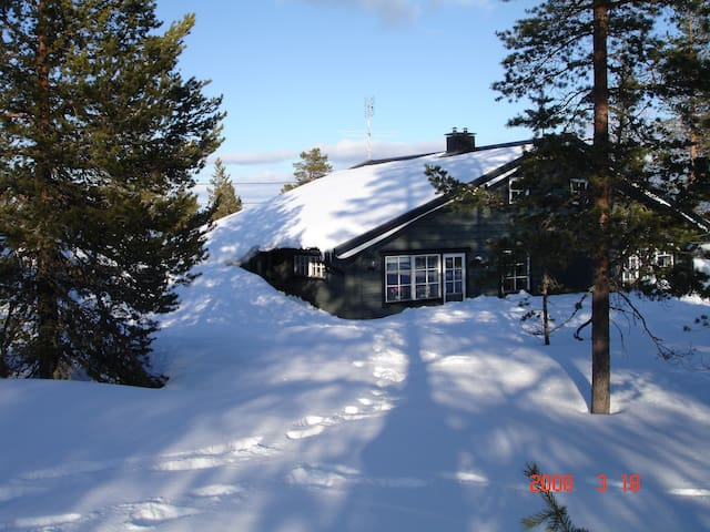 Lovely mountain cabin in Sälen! - Malung