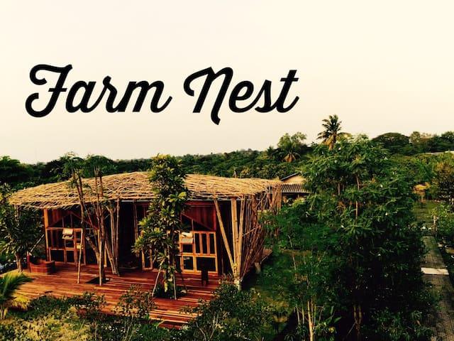 Farm nest B