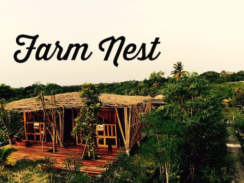 Baankaimuan(Farm nest 1)