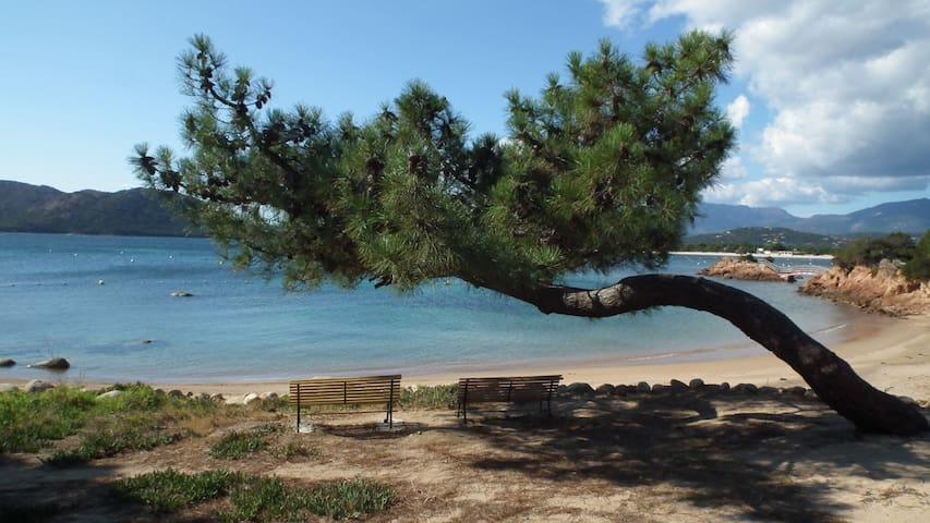 Mini villa climatisée, plage de Cala Rossa à pied.