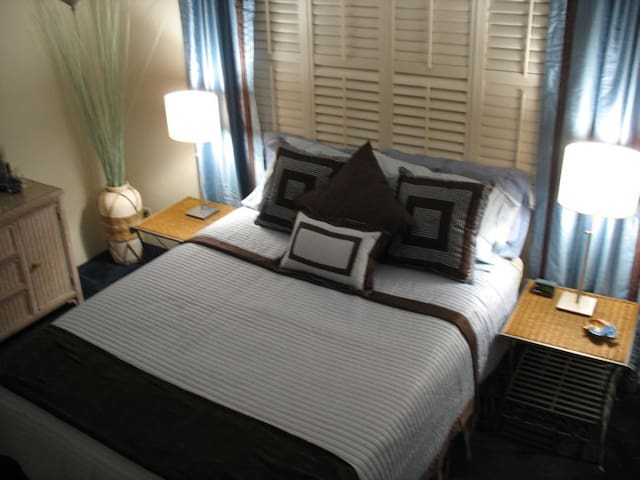 Bedroom - Queen size bed with Cotton Sheets, Non- Allergy Down Pillows.