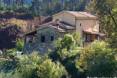 L'Erba Persa a Casa Villara 1 - Beverino - その他