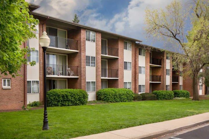 Cozy, Convenient Comfortable Apartment - Alexandria - Lägenhet