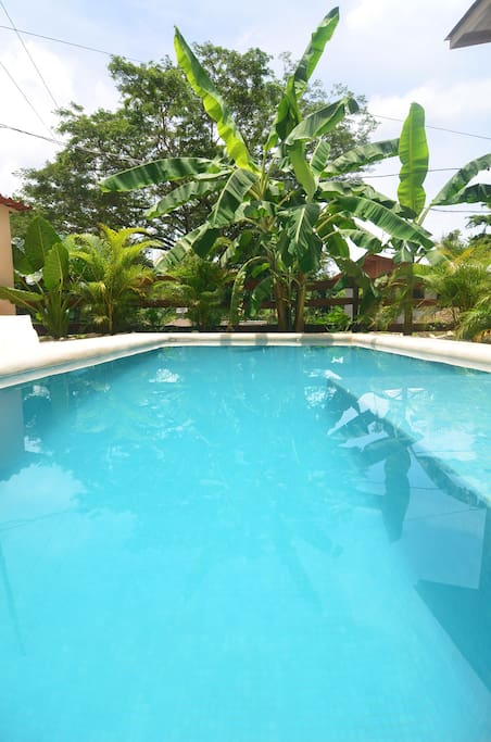 pool shared  with casa mono