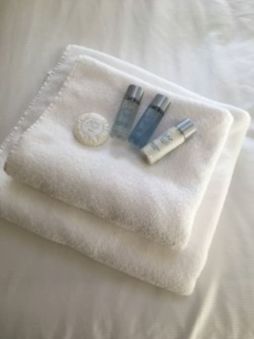 Luxury toiletries and towels are provided for guests