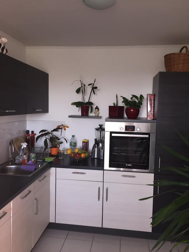 Nice apartment on boarder to Munich