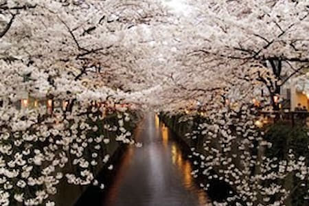Fast WiFi &close to SHIBUYA,MEGURO,EBISU,Haneda - Meguro-ku - Apartament