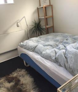 1 basement bedroom - Odense