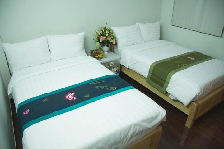 Apple Homestay and Travel
