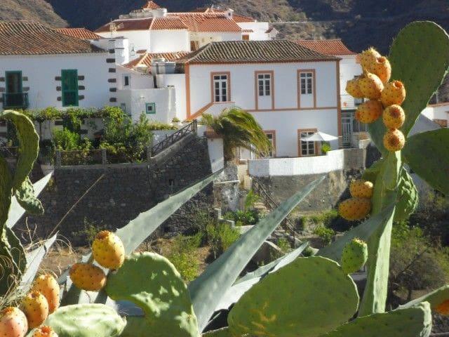 Vistas excepcionales, 2 terrazas - Tejeda - Dom
