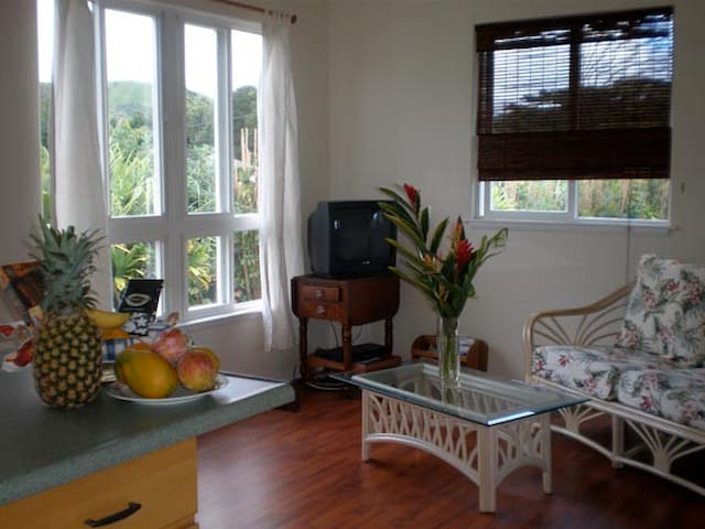 Sweet 1BR Cottage w Waterfall Views - Kapaa - Huis