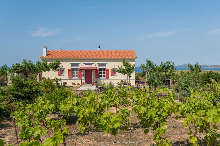 A modern alternative farmhourse in Lemnos