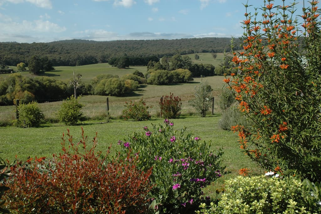 Garden views across to the Otways