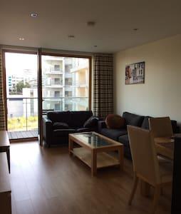 Private Room Sandyford Beacon - Apartment