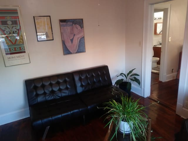 South Downtown -Spacious 1BR Facing Bushnell Park