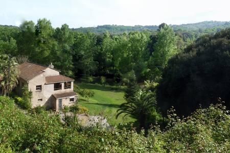 B & B  La Rivière -Chambres d'hôtes - Folelli