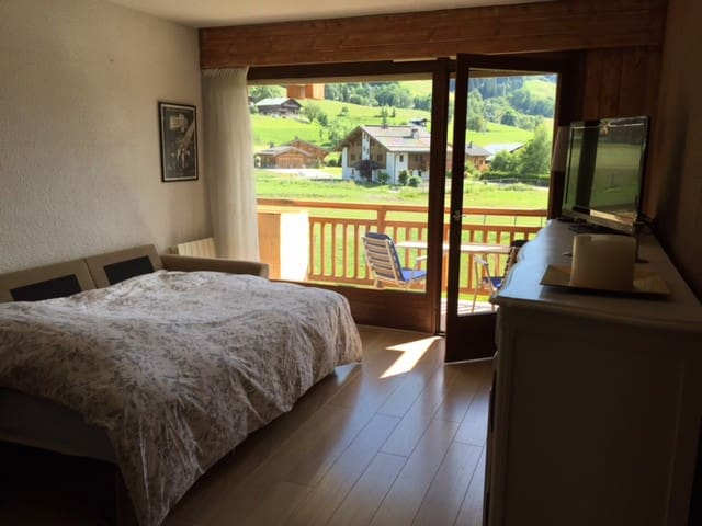 Renovated studio on the slopes - Praz-sur-Arly