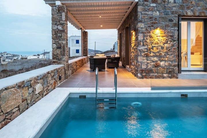 Villa Dinasty Mykonos
