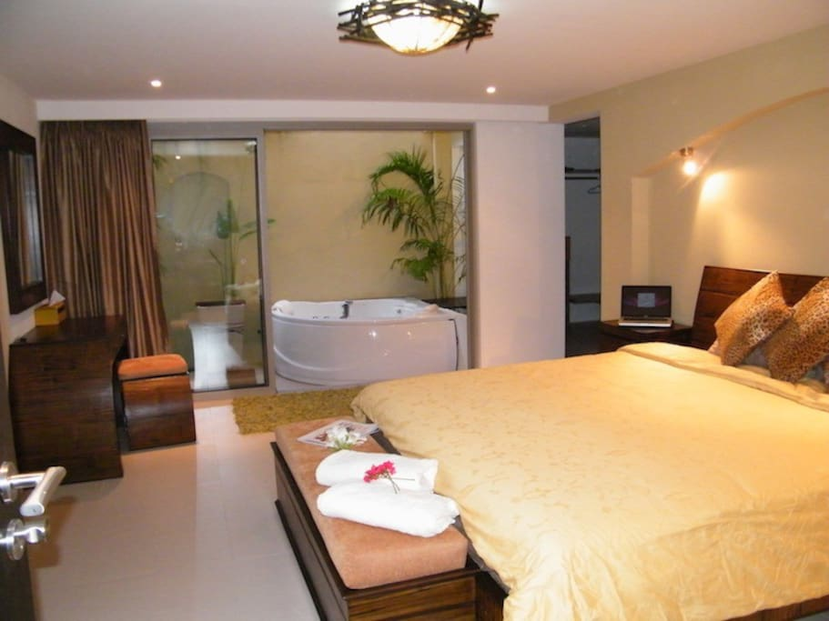 grd floor bedroom with inside/outside jacuzzi