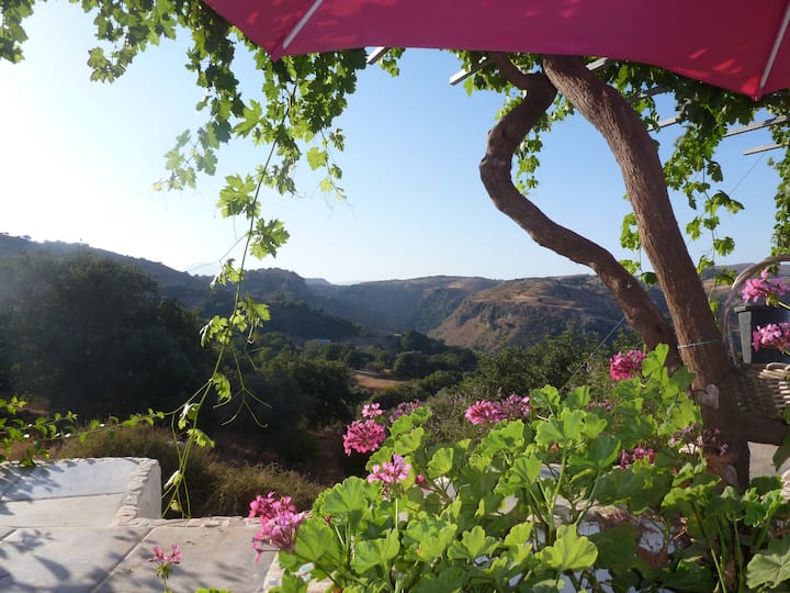 Magical Hidden Cretan Retreat! Rethymnon. Monopari