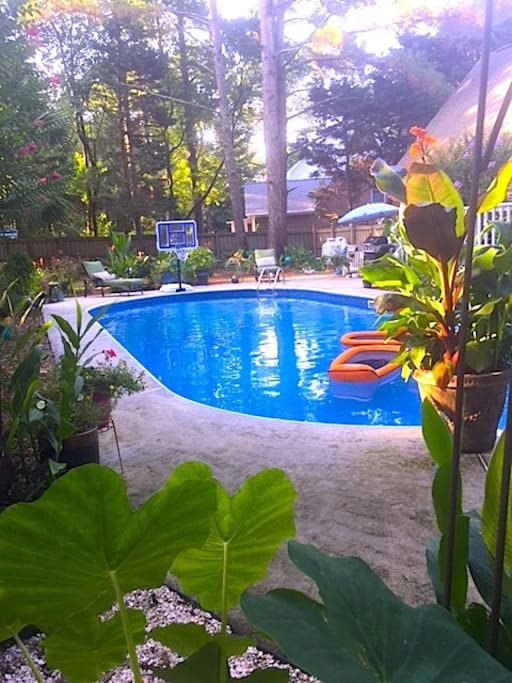 Cool and Refreshing pool to swim and rinse off in after the beach Pool is closed October 1