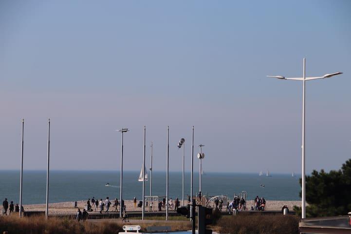F2, pleine vue mer,  à 100 mètres de la plage.